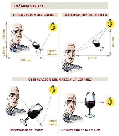 Examen visual del #vino