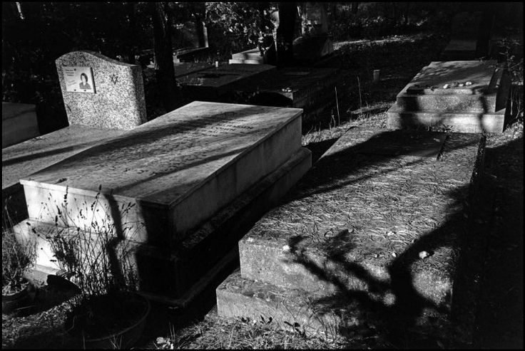 Magnum Photos -  Patrick Zachmann. FRANCE. Provence-Alpes-Cotes d'Azur region. Vaucluse department. Carpentras. Jewish cemetery. 2000. Again great use of shadows and highlights to draw the eye to the subject.