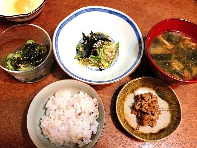 今晩の夕飯は、小鉢とご飯。美味しい!春雨サラダは、出汁、酢醤油、砂糖、ラー油の冷やし中華のつゆを作って。 - 8件のもぐもぐ - 春雨サラダ、わかめとなめこの味噌汁、納豆、玉子、残り物 by emuii