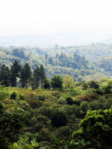 View from Apaneca Coffee farm, El Salvador... I've been here!