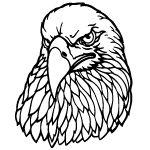 44 best Eagle wood carving ideas images on Pinterest