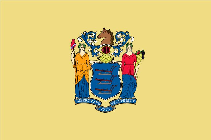 New Jersey State Flag - 3ft x 5ft polyester