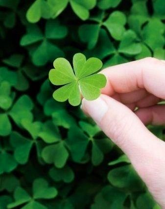 Four leaf clover....I always find them!! One day I found over 21! and another time I found a four leaf clover and a five leaf clover it was amazing!