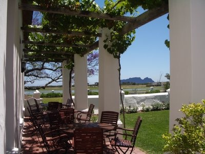 On a lovely Cape summers day what could be better than sitting on the stoep of the Vergenoegd gable sipping on a refreshing Runner Duck wine with Table Mountain in the foreground and the Helderberg Mountains behind.
