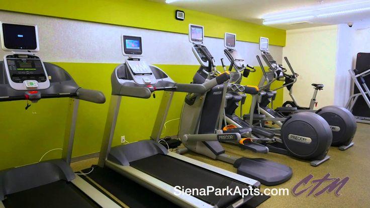 Siena Park | Arlington VA Apartments | Lincoln Property Company | LPC