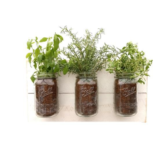 Shabby Chic Mason Jar Planter Garden Herb Hanging Indoor