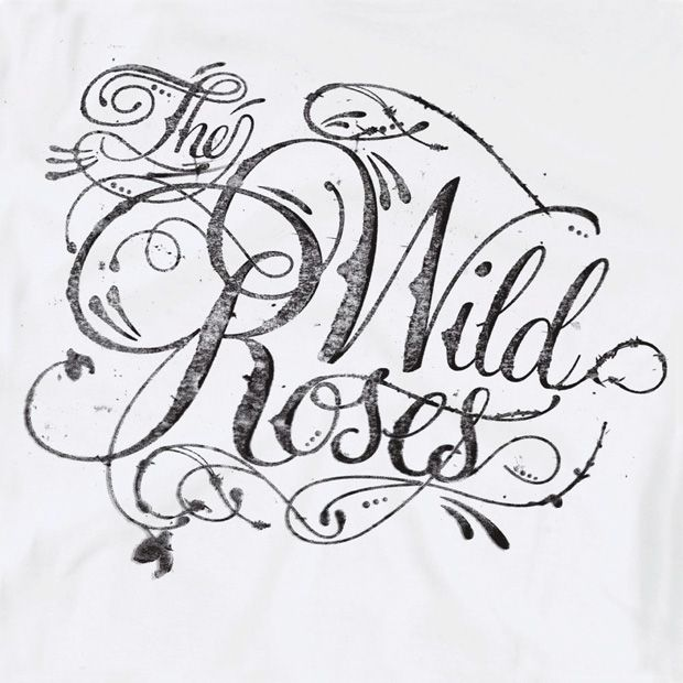 (Newcastle-based design studio Reluctant Hero. I lost my damn mind over this stuff.) the wild roses - type