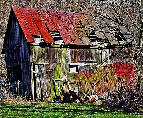 Love the different colors of old barn wood