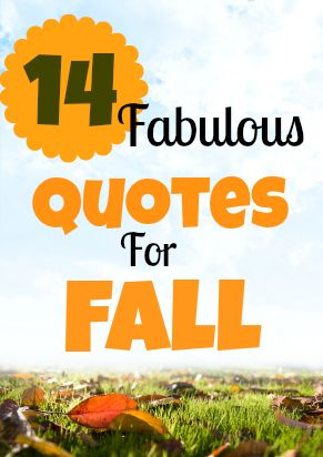 Fall is here! Check out these 14 fabulous quotes that pay tribute to fall and the start of the autumn equinox.