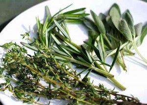 Como secar Ervas Aromáticas - A forma mais natural de secar ervas aromáticas é deixá-las secar ao ar livre. Escolha um local seco, escuro, ventilado e quente, mantendo a temperatura entre os 22ºC e 33ºC.