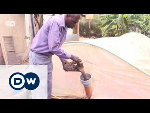 Poop power in East Africa | Eco-at-Africa