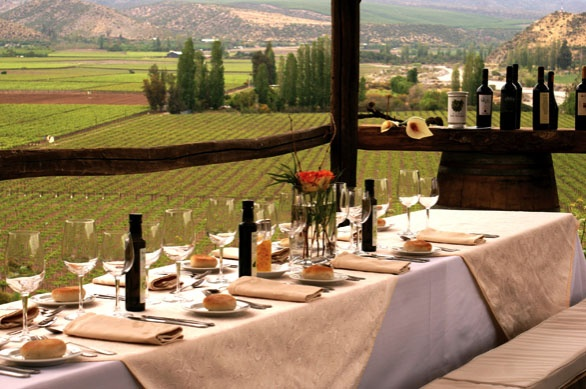 Viña Errazuriz - why yes! Let's go to Chile for wine tasting!