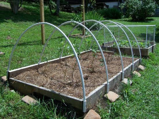 Building Garden Fence Boxes Garden Pinterest