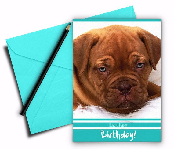Birthday card, Bordeauxdog card, Printable birthday card, Printable greeting card, 5x7 folded card, Instant download, Dog greeting card