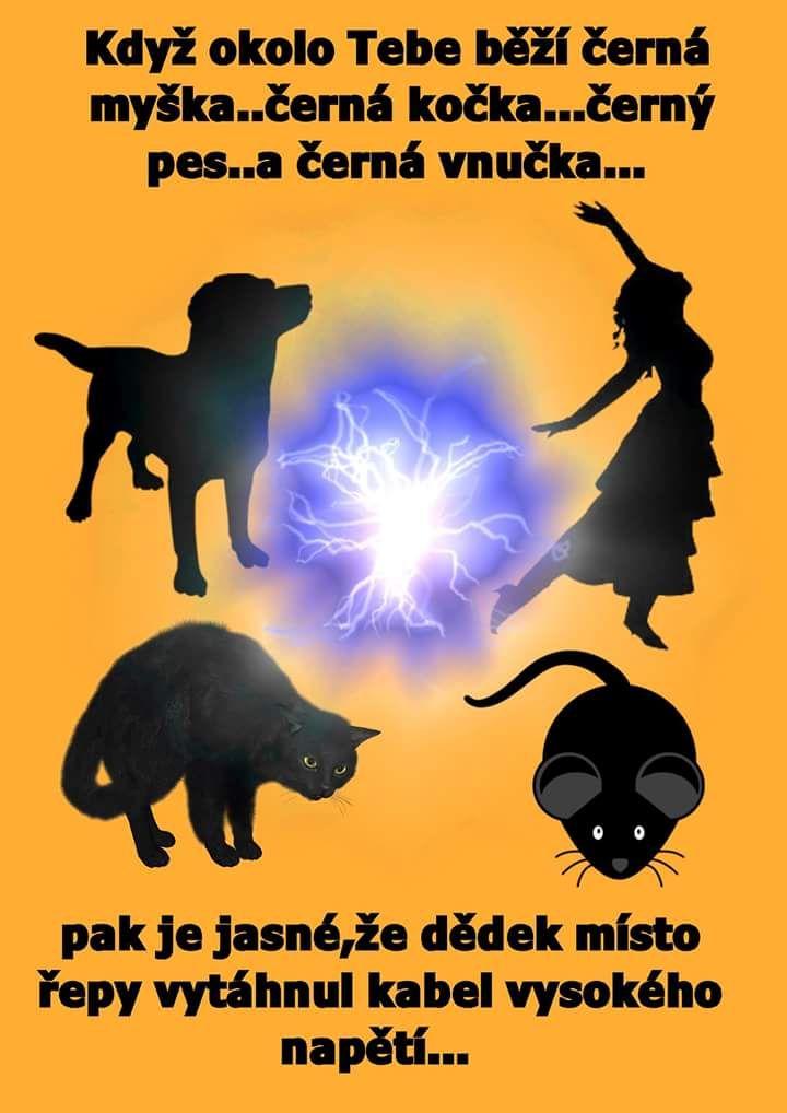 Když okolo Tebe běží černá myška... černá kočka...černej pes... a černá vnučka... pak je jasné, že dědek místo řepy vytáhnul kabel vysokého napětí...
