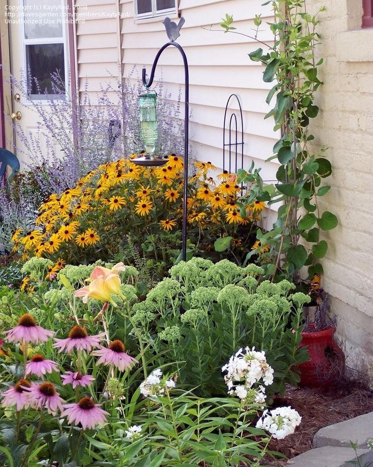 Berm example goldfinch and butterfly garden pinterest for Example garden designs