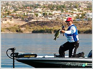 72 best images about things to do in havasu on pinterest for Fishing lakes in arizona