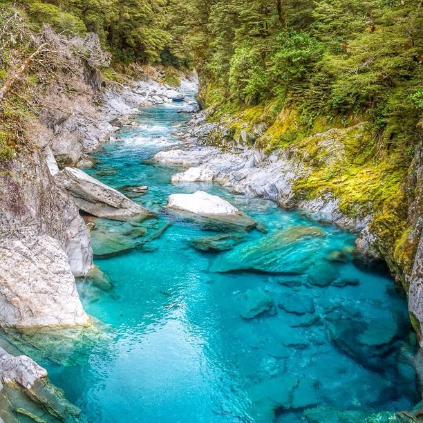 Blue Pools Walk, Mt Aspiring National Park, New Zealand