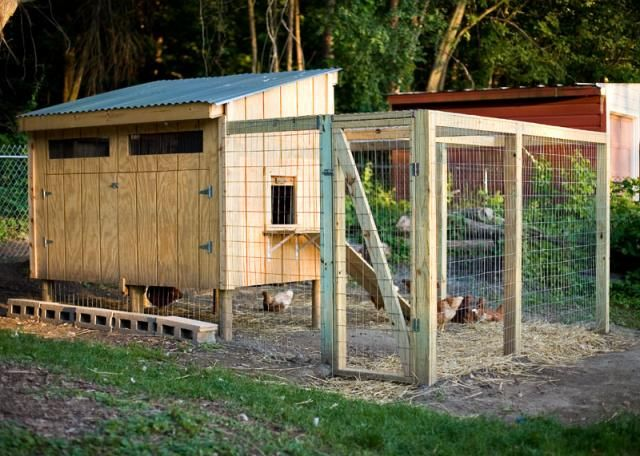 chicken coop made from pallets | Pallet Coop Hybrid