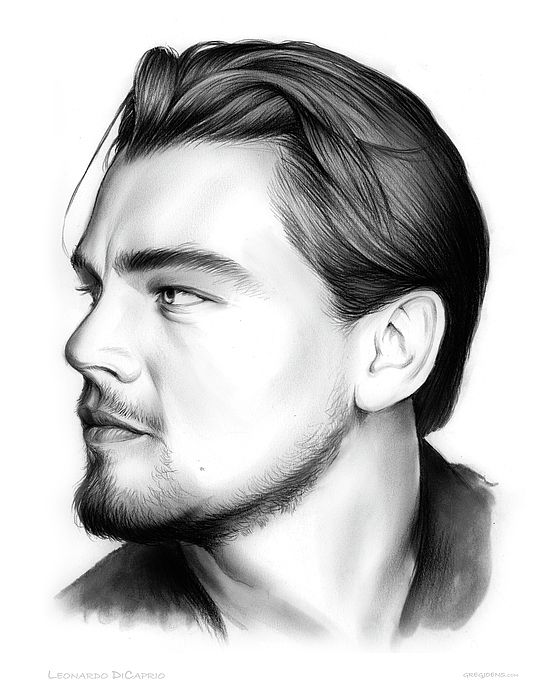 Leonardo dicaprio pencil sketch art drawing pencil pencilart leonardodicaprio celebs
