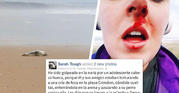 """Unos adolescentes se """"divertían"""" mientras torturaban a una cría de foca. Sarah Tough, una joven de 25 años, caminaba por ahí con su perra cuando vio la  escena"""