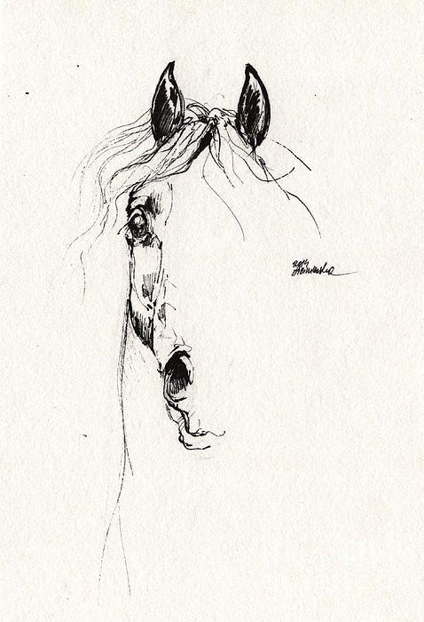 Arabian Horse Sketch by Angel Tarantella @fineartamerica