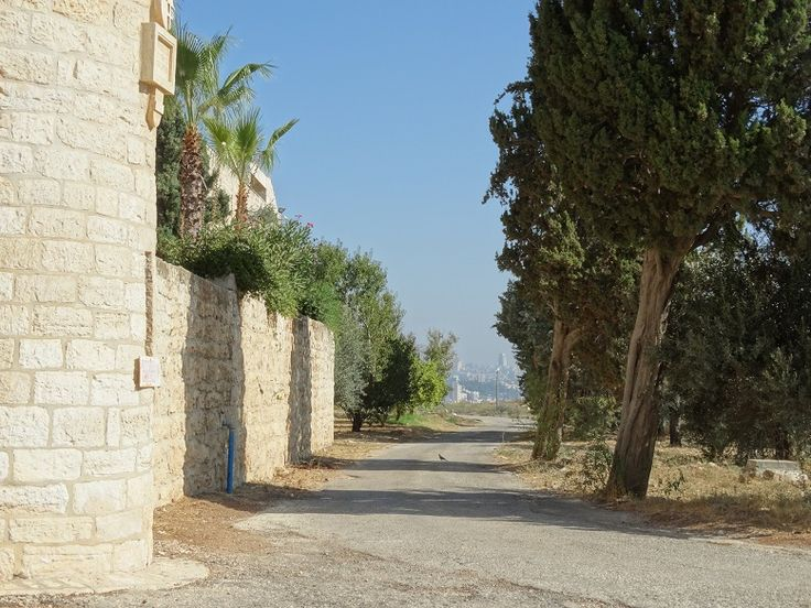 Facing north to Jerusalem. The Tower and our courtyard wall is to the left.