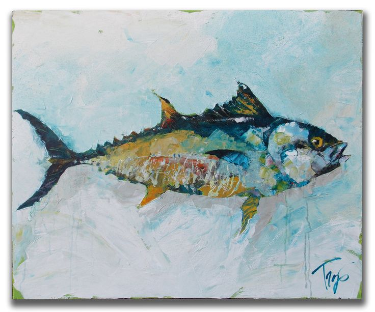 1000 images about fish on pinterest trips parks and for Blue runner fish