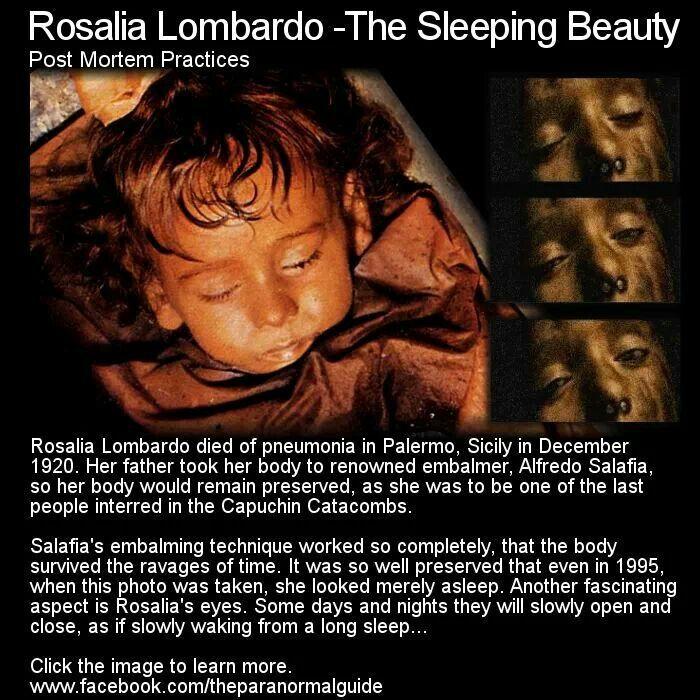 Rosalia Lombardo