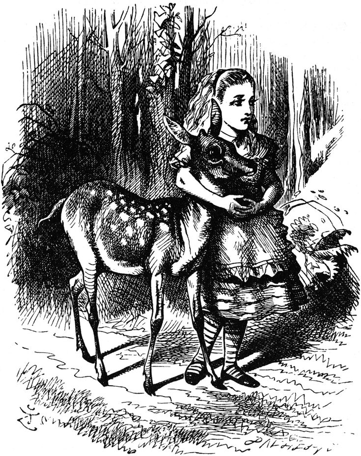 Through the Looking Glass pictures   John Tenniel