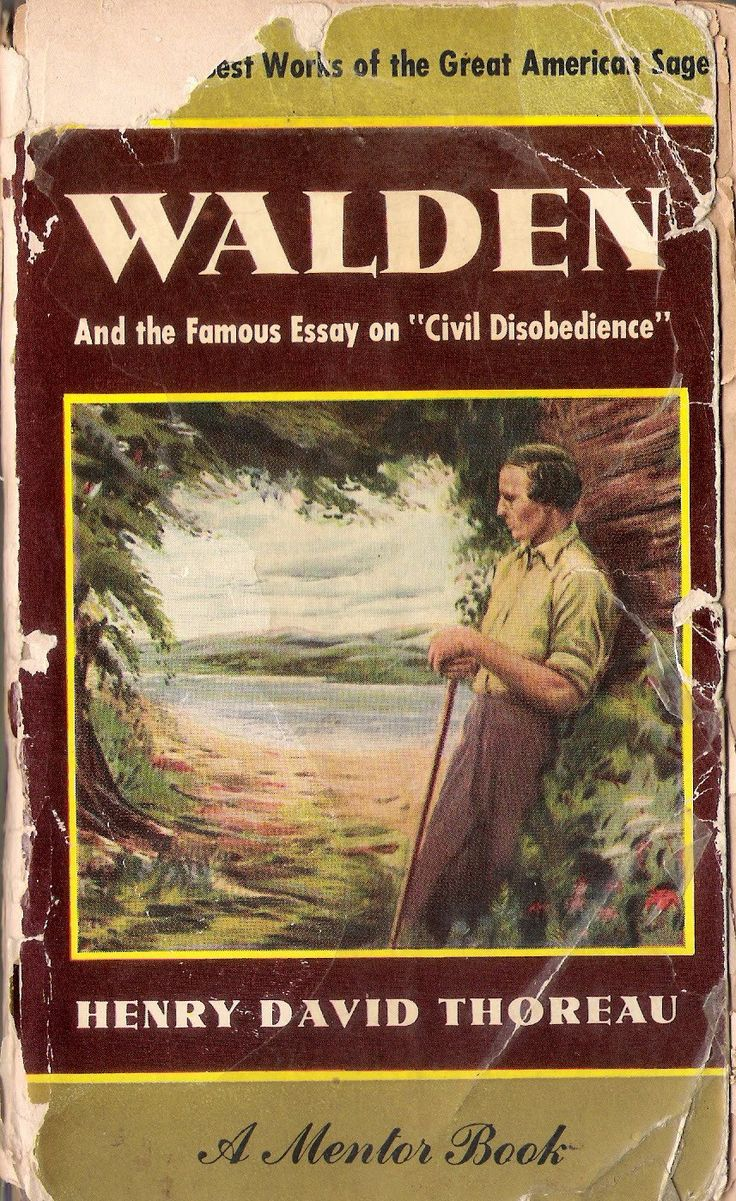 best henry david thoreau images henry david walden and the famous essay on ldquocivil disobediencerdquo henry david thoreauanimal