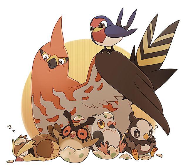 Epaqjrja Mangaka, Bird Pokémon: Taillow, Talonflame, Pidgey, Hoothoot, Pidove, and Starly