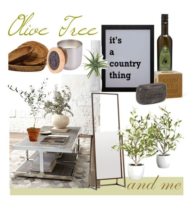 Olive Tree and Me by vervetandhowler on Polyvore featuring polyvore, interior, interiors, interior design, home, home decor, interior decorating, Le Souk, Creative Co-op, Nearly Natural, Mitchell Gold + Bob Williams, Paddywax, Mirrors, interiordecor, hometrends and olivetree