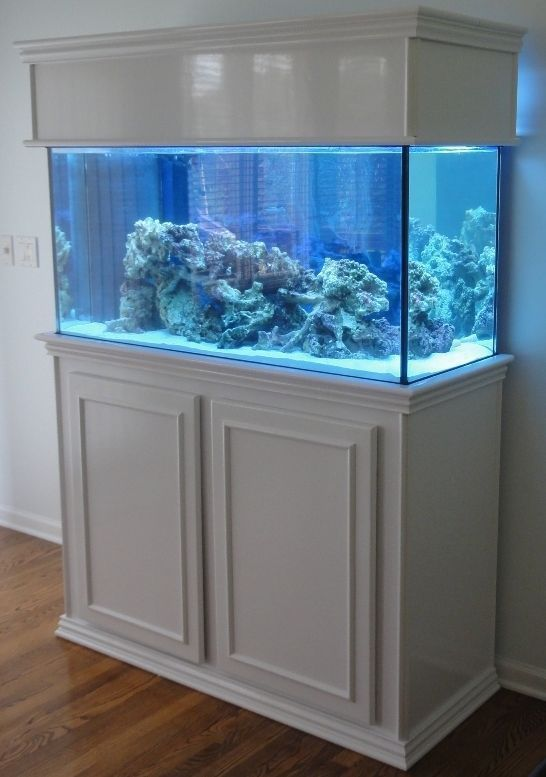 standing fish tanks | Supplies for DIY Fish Tank Stand