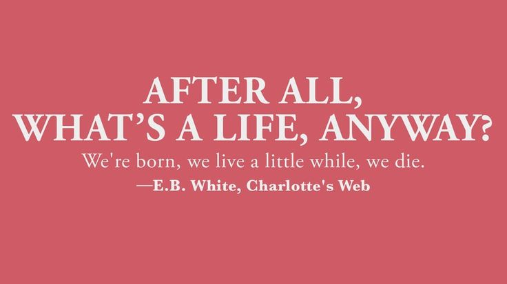 "Children's book quotes that every adult should know: ""After all, what's a life, anyway? We're born, we live a little while, we die."" - E.B. White, ""Charlotte's Web"" #booklove"