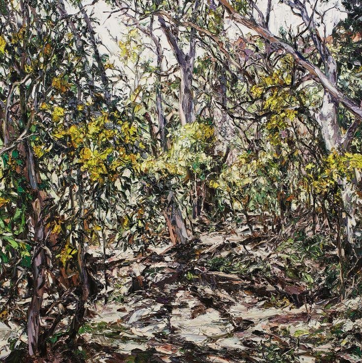 Nicholas Harding: Wilpena wattle :: Wynne Prize 2016 :: Art Gallery NSW