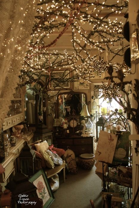 This makes me want to open a cute shop with books, trinkets, coffee, and treats. The twinkle lights on branches are beautiful and al the small details can be used in country interior. Looks very cozy.