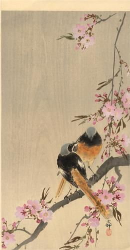 Redstart on cherry branch - Ohara Koson