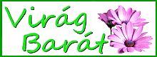 www.viragbarat.hu