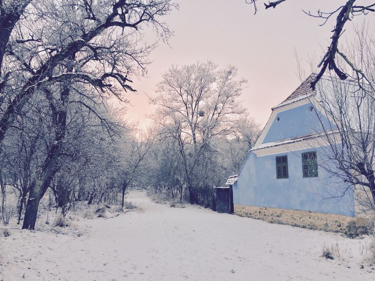 fresh snow near the forest and cottage houses in Viscri village, Transylvania