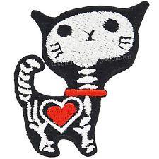 x ray kitty