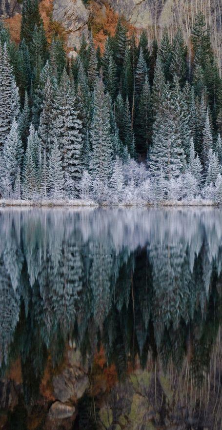 Bear Lake in Rocky Mountain National Park, Colorado •