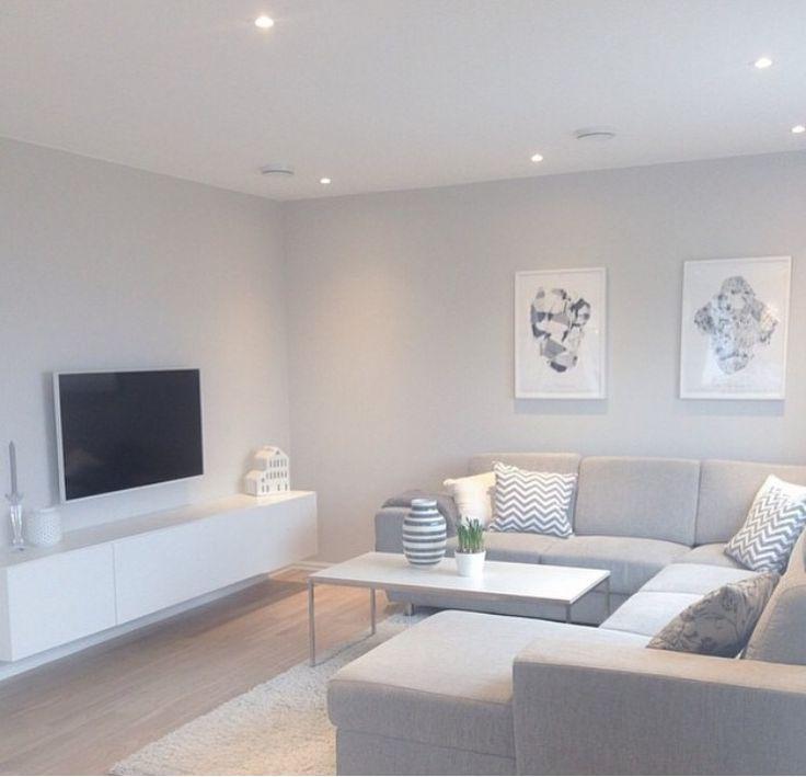 Grey Basement Ideas: Contemporary Living Room Design, Home