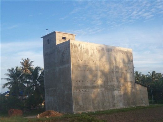 Bird nest farming - big business - Village Life in