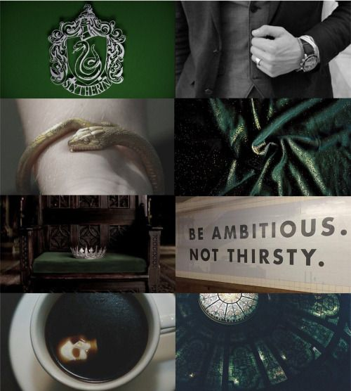 "Hogwarts House Aesthetics: Slytherin | Cunning, resourcefulness, and ambition. ""Great ambition is the passion of a great character. Those endowed with it may perform very good or very bad acts. All depends on the principles which direct them."" —Napoleon Bonaparte"