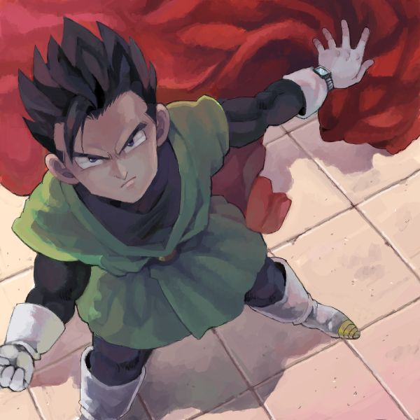 Saiyaman Gohan. I actually enjoyed Gohan being Saiyaman... But I guess everyone in the community seems to hate him, I found it funny... Hey! everyone has their own tastes alright.