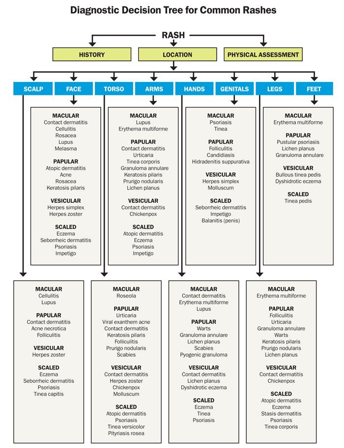 Diagnostic decision tree for common rashes featured on http://nurse-practitioners-and-physician-assistants.advanceweb.com.
