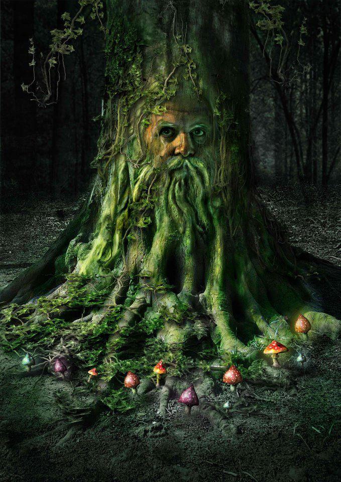 Enchanted Forest #MagicalTree / Mondo incantato #AlberoMagico