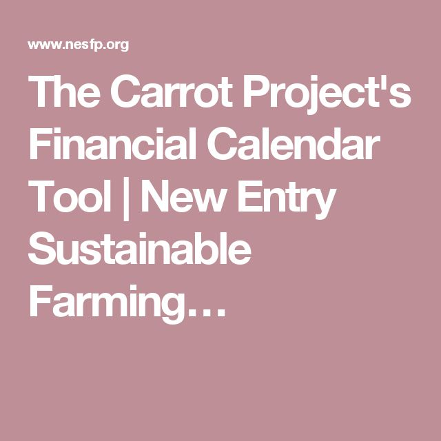 The Carrot ProjectS Financial Calendar Tool  New Entry