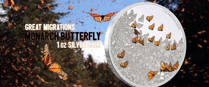 Monarch Butterfly Flutters onto Great Migrations Silver Series